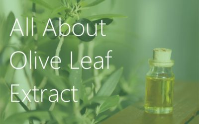 All About Olive Leaf Extract