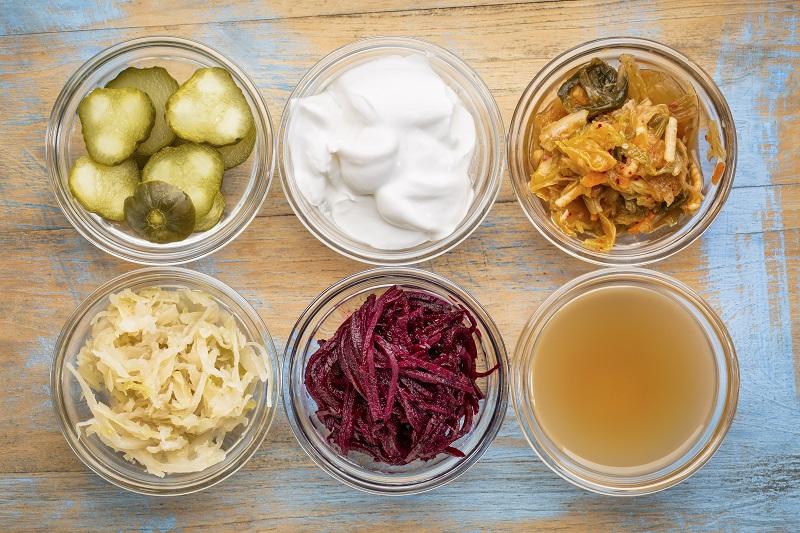 Probiotics Explained